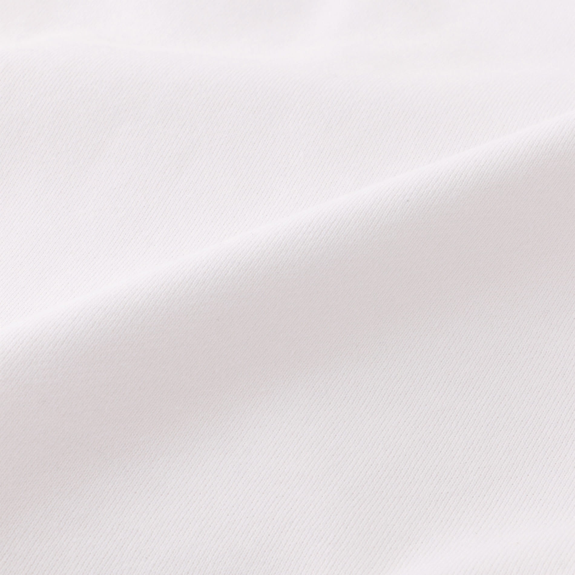 【Champion】MEN PULLOVER HOODED SWEATSHIRT C3-R101