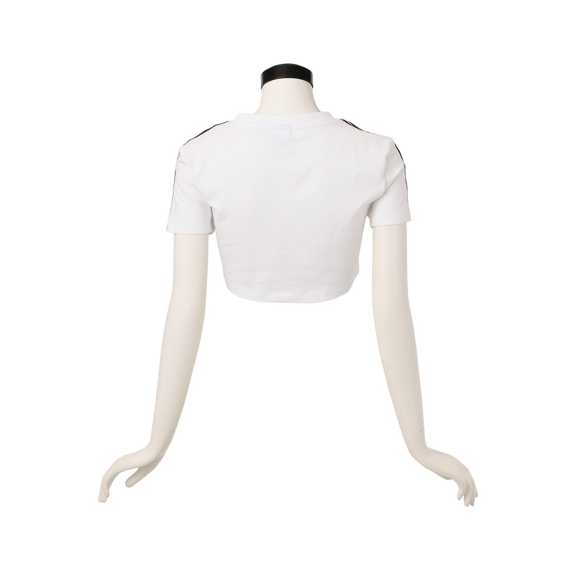 【adidas】WOMEN クロップドTシャツ